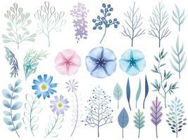 Insieme di elementi botanici assortiti isolato su uno sfondo bianco.