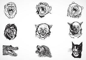Pacchetto di animali feroci