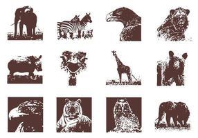 Pacchetto di vettore di animali selvatici grunge