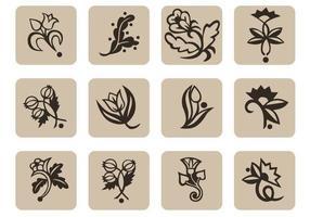 Pacchetto di icone floreali vettoriali