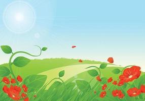 Priorità bassa floreale di vettore dei papaveri di estate