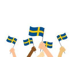Illustrazione vettoriale mani che tengono le bandiere della Svezia su sfondo bianco