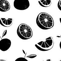Frutti di limone fresco, raccolta di illustrazioni vettoriali