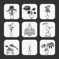 Pacchetto di vettore di pianta casa