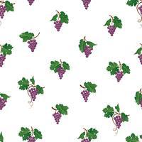 Modello senza cuciture ramo d'uva. Ornamento naturale della frutta dell'iarda del vino. Sfondo di cibo