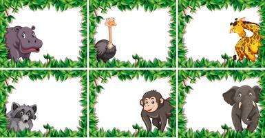 Set di confine di animali selvatici
