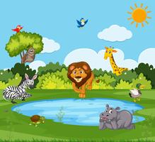 Animale selvatico in natura vettore