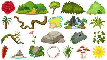 Set di oggetti naturali per la decorazione vettore