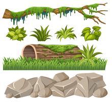 Set di oggetti della giungla vettore