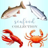 Collezione Seafood vettore