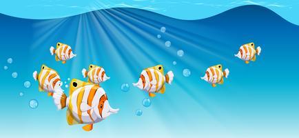 Pesce che nuota sotto l'oceano