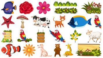 Set di animali e piante vettore