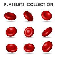Grafica piastrinica realistica che circola nei vasi sanguigni del corpo umano
