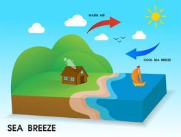 Brezza marina. Il vento freddo soffia dal mare verso la costa durante il giorno. vettore