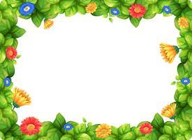 Bella cornice di fiori di gerbera