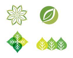 L'ecologia lascia l'illustrazione di logo vettore