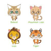 Set di grandi specie di gatti selvatici vettore