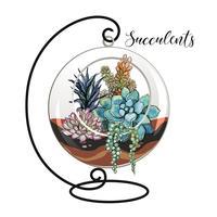 Succulente in un acquario decorativo per fiori. Grafica e macchie acquerello. Vettore.