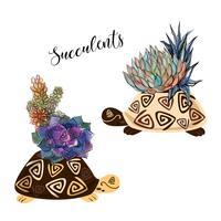 Un bouquet di piante grasse in un vaso di fiori a forma di tartaruga. Grafica e macchie acquerello. Vettore.