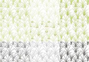 Pacchetto di vettore del modello di erba