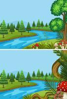 Due scene con alberi di pino lungo il fiume