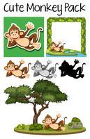 Un branco di scimmie carino