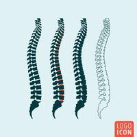 Icona della colonna vertebrale umana vettore