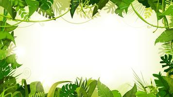 Fondo ampio del paesaggio tropicale della giungla