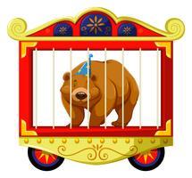 Orso grizzly nella gabbia del circo