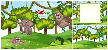 Set di scene di animali della giungla vettore