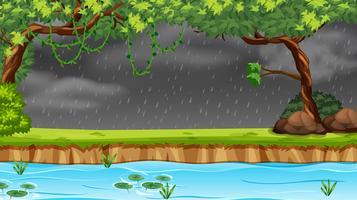 Piovendo nella foresta