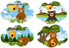 Set di scene di orso