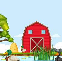Paesaggio rurale casa colonica vettore
