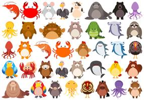 Set di simpatici animali vettore
