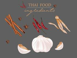 elemento di vettore di raccolta ingredienti thai