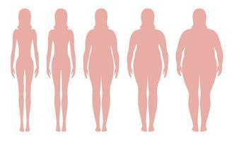 Illustrazione vettoriale di indice di massa corporea da sottopeso ad estremamente obesi. Sagome di donna con diversi gradi di obesità. Corpo femminile con peso diverso.