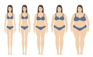 Illustrazione vettoriale di indice di massa corporea da sottopeso ad estremamente obesi. Sagome di donna con diversi gradi di obesità. Concetto di perdita di peso.