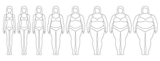 Illustrazione vettoriale di sagome di donna con peso diverso da anoressia ad estremamente obesi. Indice di massa corporea, concetto di perdita di peso.