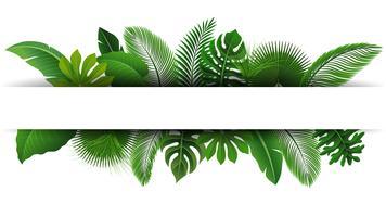Iscriviti con lo spazio del testo di foglie tropicali. Adatto a concetto di natura, vacanze e vacanze estive. Illustrazione vettoriale