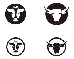 Simboli testa di mucca e modello di logo vettoriale