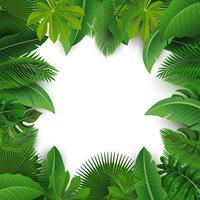 Sfondo con lo spazio del testo di foglie tropicali. Adatto a concetto di natura, vacanze e vacanze estive. Illustrazione vettoriale