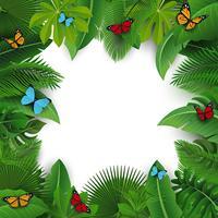 Sfondo con lo spazio del testo di foglie tropicali e farfalle. Adatto a concetto di natura, vacanze e vacanze estive. Illustrazione vettoriale
