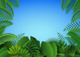 Sfondo di foglie tropicali. Adatto a concetto di natura, vacanze e vacanze estive. Illustrazione vettoriale