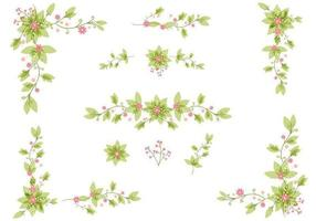 Insieme di vettore delle foglie floreali eleganti