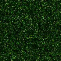 vista superiore sfondo erba