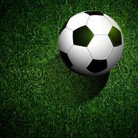 pallone da calcio su erba verde vettore