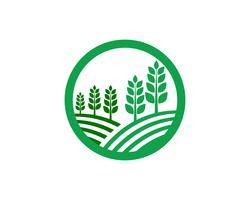 Immagine verde unica di vettore del modello di logo di affari di agricoltura
