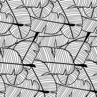 Pattern di sfondo tropicale. Illustrazione vettoriale disegnato a mano.