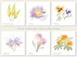 Un insieme di sei illustrazioni del fiore di vettore. vettore