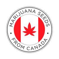Semi di marijuana dall'icona del Canada.